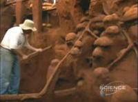 超巨大なアリの巣に石膏を流し込んで掘り出してみる